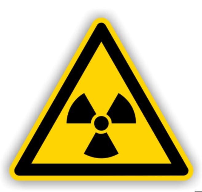 """Der Alleingang: Atomstrom NEIN - Atomwaffen """"JA"""""""