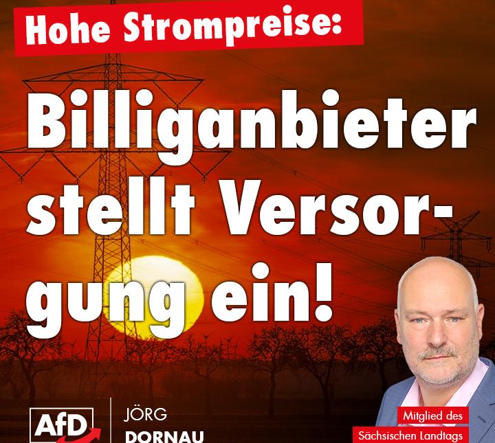Billigstromanbieter Immergrün in Teilen von Hessen und Bremen stellt die Belieferung von Hunderten Kunden ein